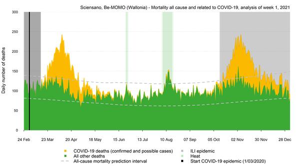 Mortaliteitscurve Wallonië