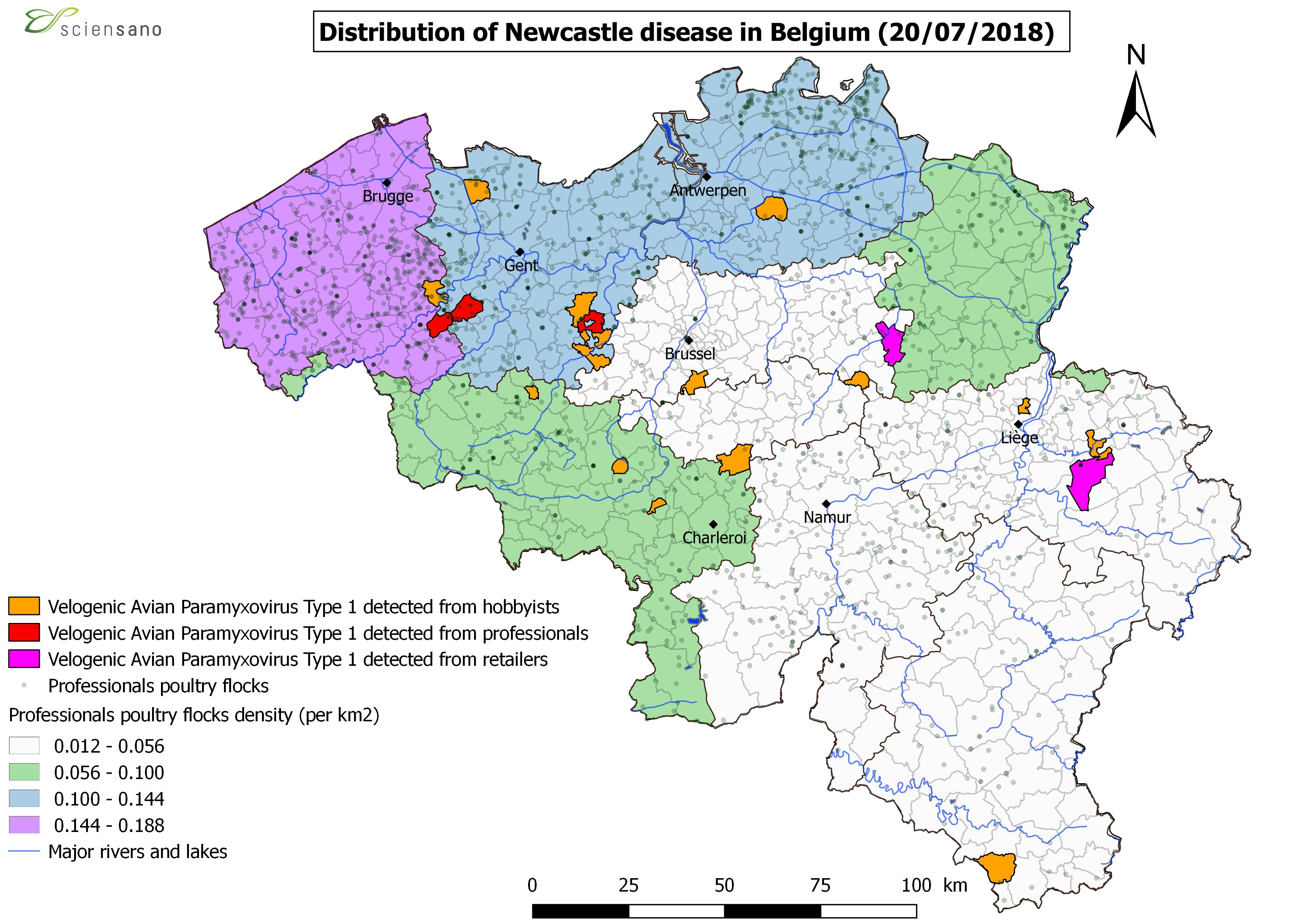 Distribution of Newcastle disease in Belgium (20/07/2018)